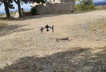 La programmation 2021 de valorisation des sites archéologiques est en cours !